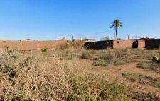 Terrain de 9900 m² à vendre km 15 route de fez Marrakech